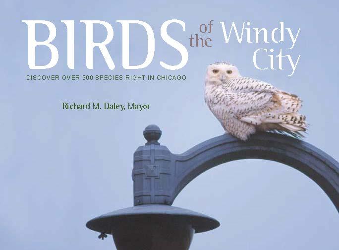 Birds of the Windy City, 2001