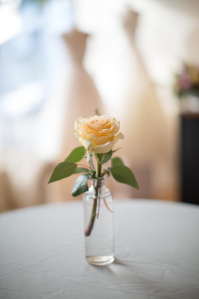 Annalise Bridal Richmond Virginia-56-X2.jpg