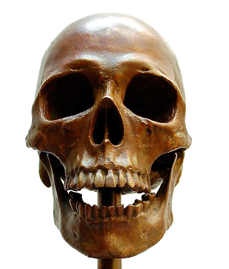cropped-skull.jpg