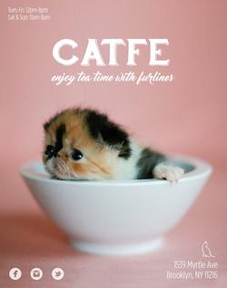 Catfe1.jpg