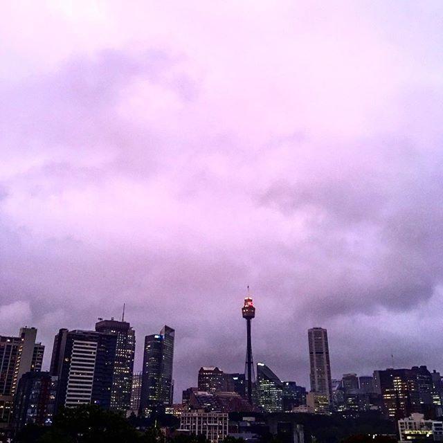 She's gone purple that Sydney! 💜  #home #darlinghurst