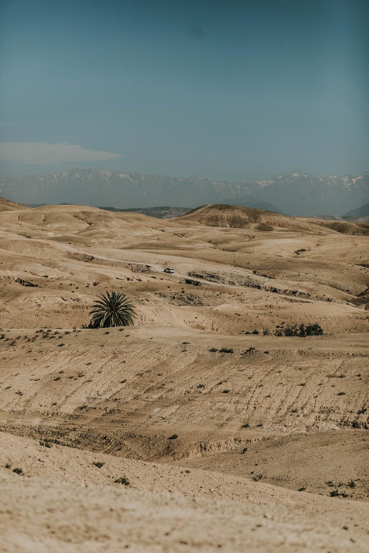 atlas mountains agafay desert