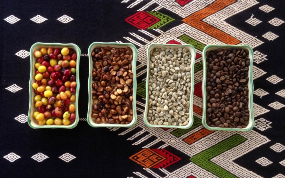 Từ trái sang: Cà phê thu hoạch trái chín – cà phê sơ chế honey – cà phê nhân – cà phê thành phẩm