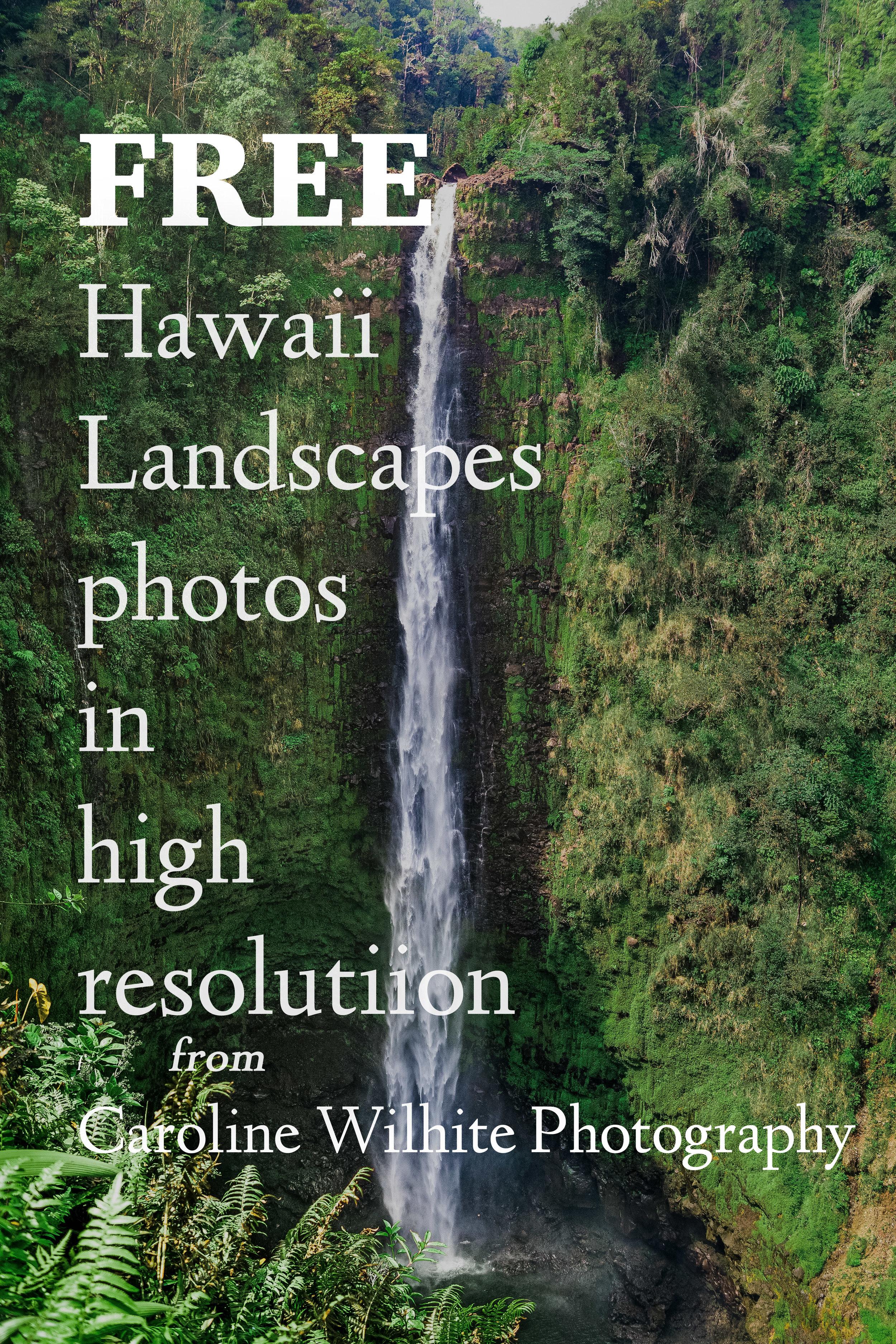 Free Hawaii Photos from Caroline Wilhite Photography