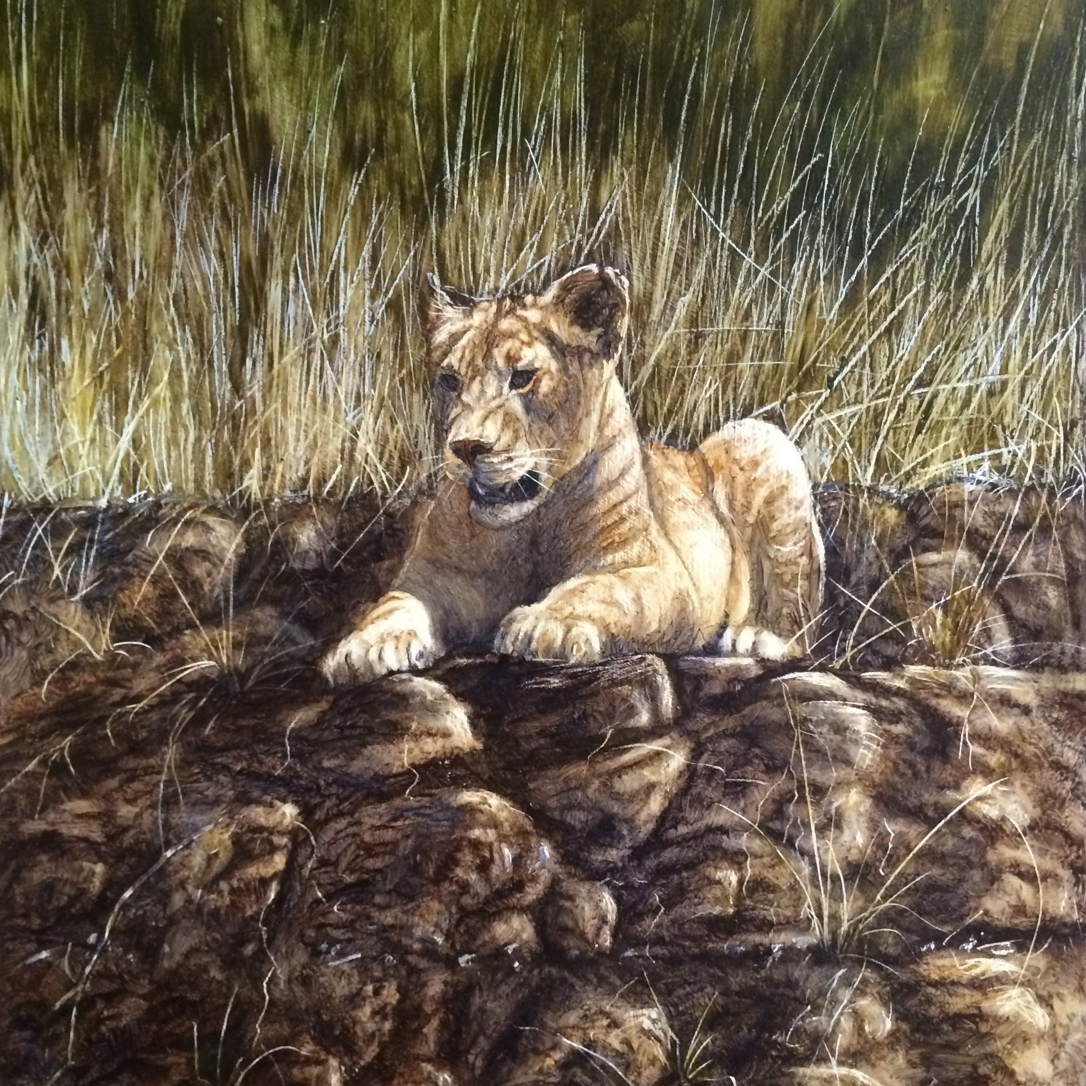 lion-cub-final.jpg