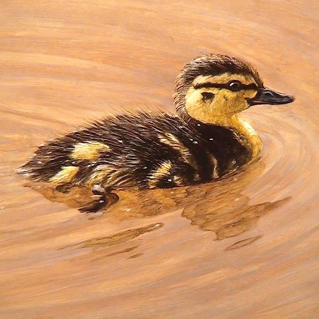 duckling-final.jpg