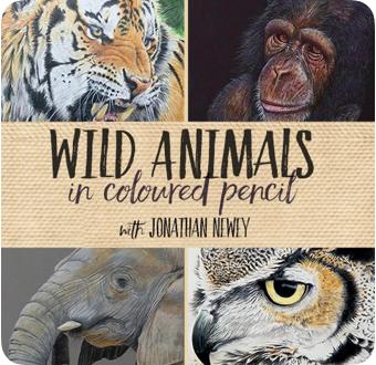 wild-animals-cp.png