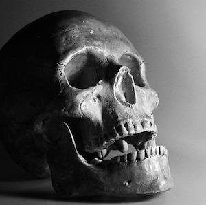 human-skull2-petra-blahoutova-pixabay.jpg