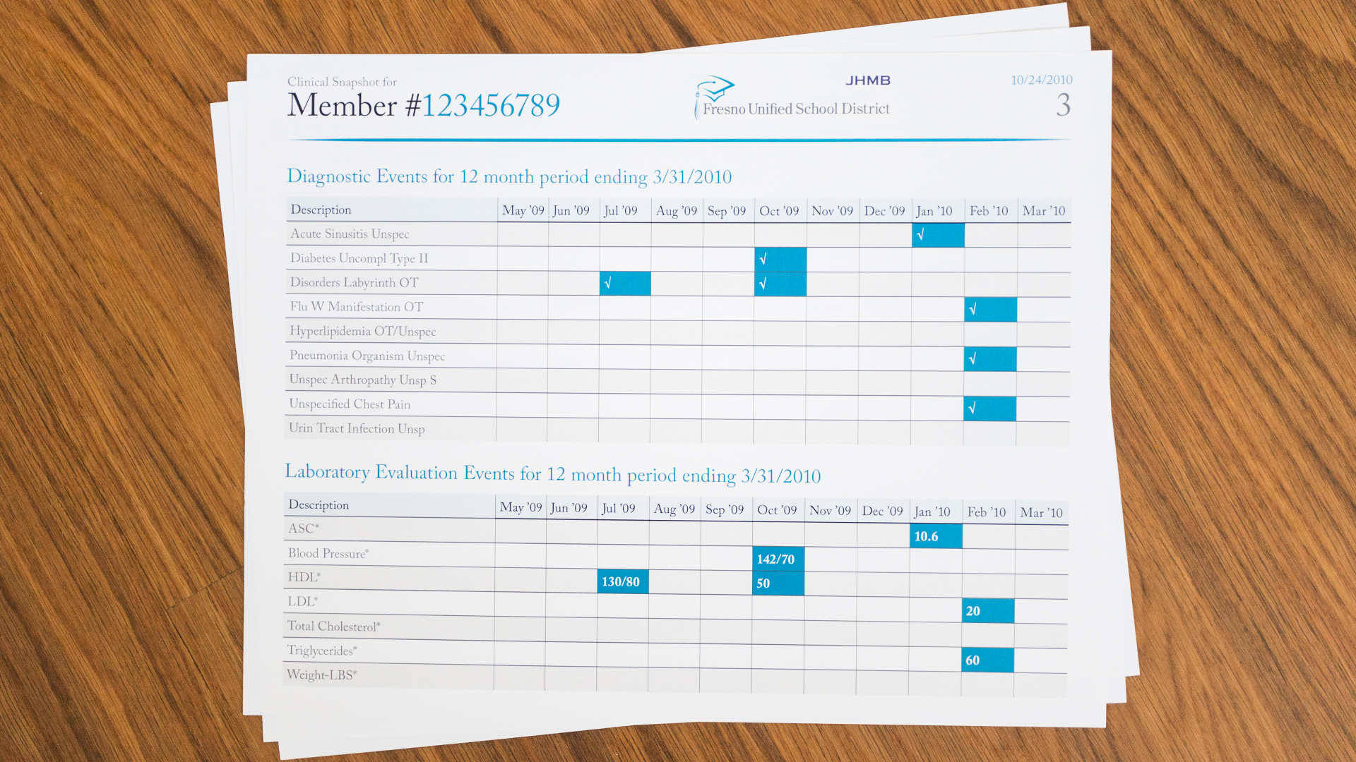 Print – Health Report Template – Page 3