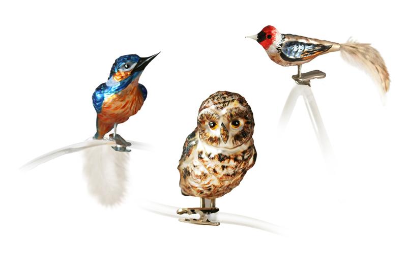 OBE Birds.jpg
