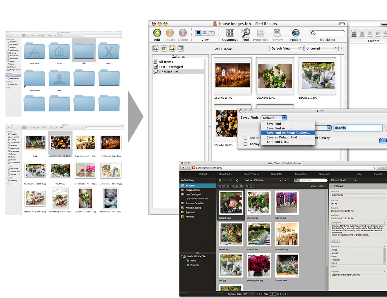 Portfolio-benefits-TF.jpg