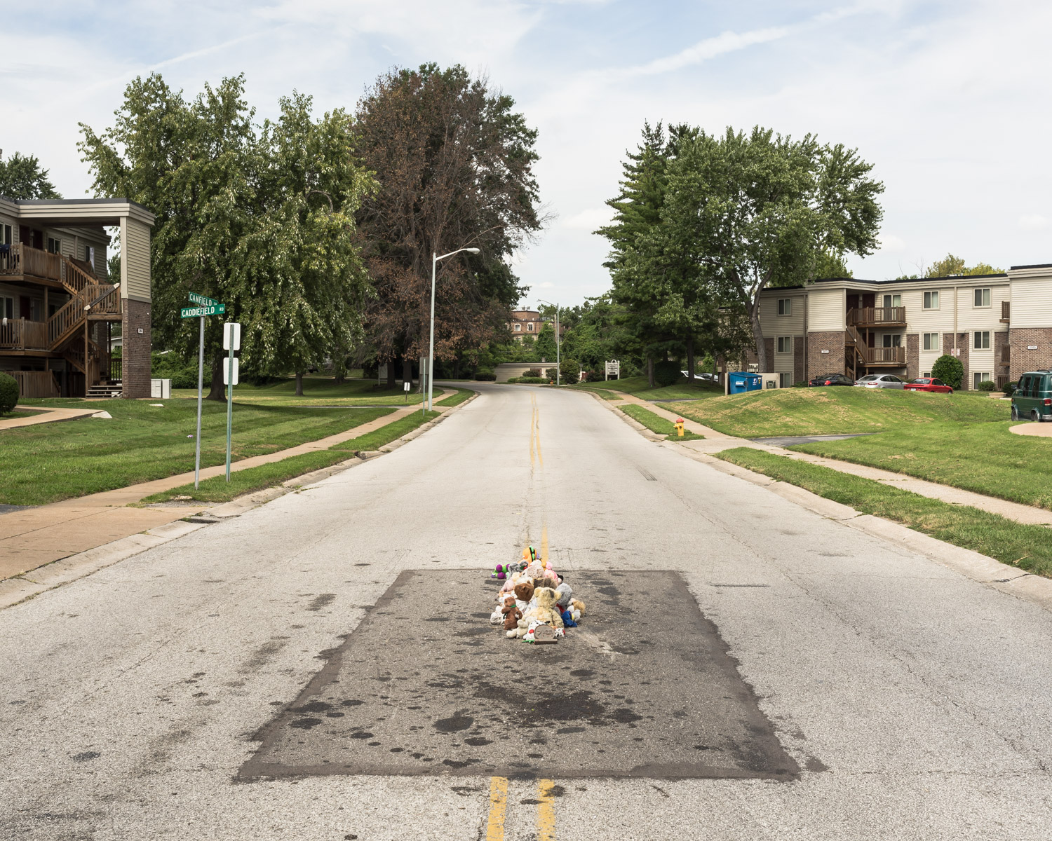 The Murder of Michael Brown, Ferguson, Missouri, 2016