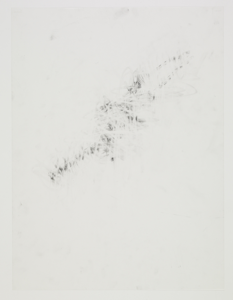 Gardening Saw , 2009, pencil on drafting film paper, 18 x 24 inches/ 45,5 x 61 cm