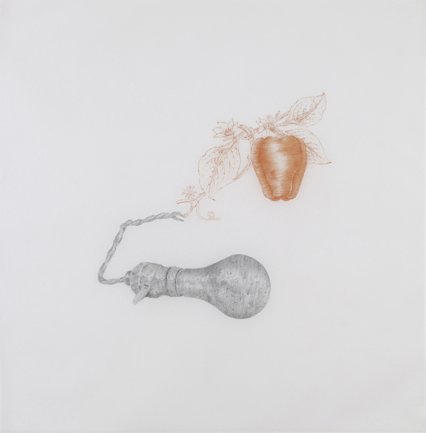 Jasper Johns , 2010, pencil and sanguine on tracing paper, 41 x 41 inches/ 104 x 104 cm