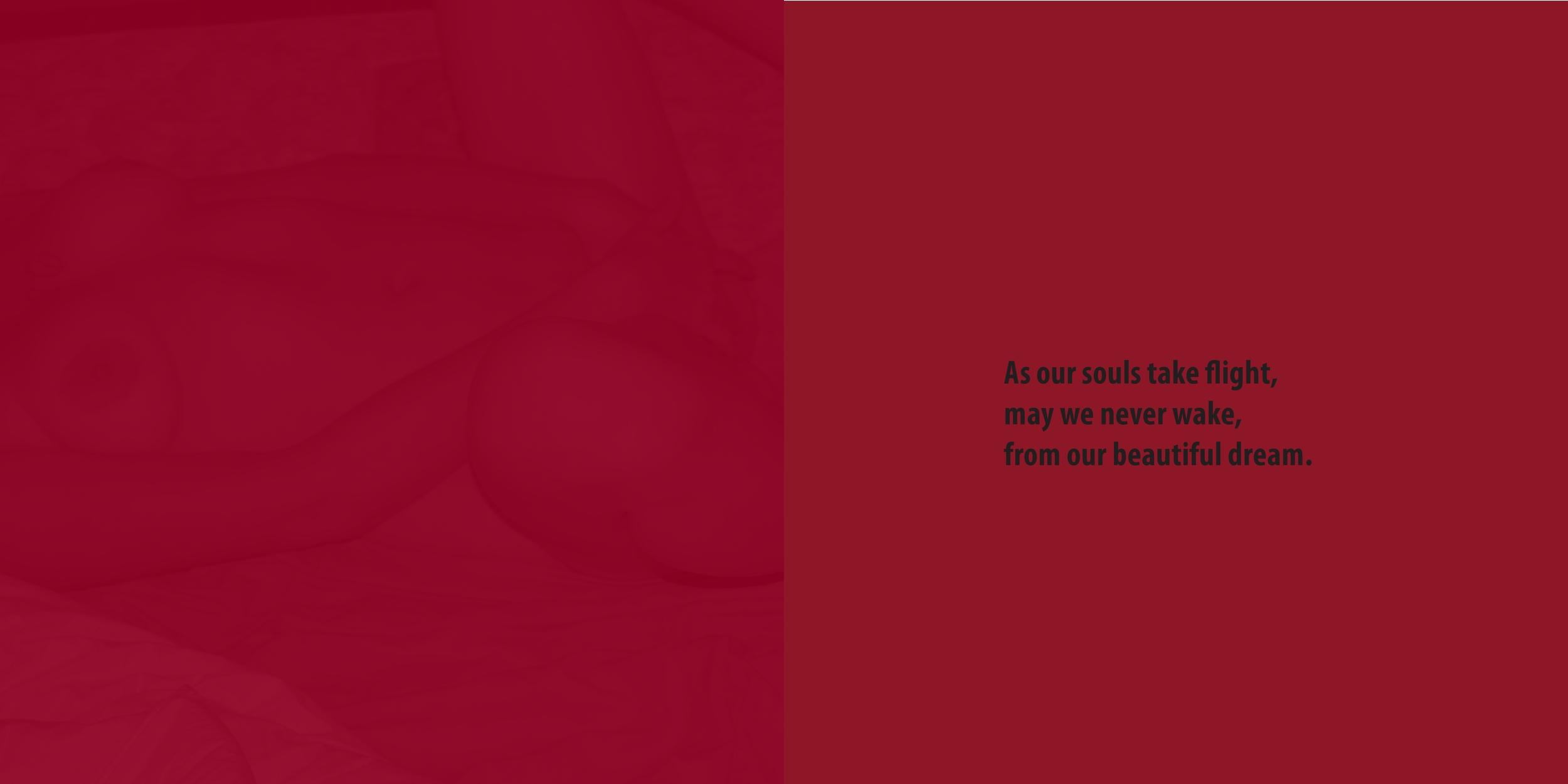 page0012.jpg