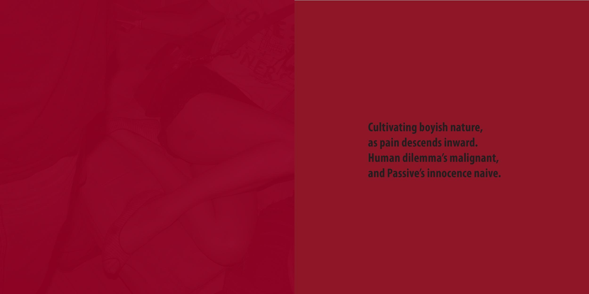 page0016.jpg