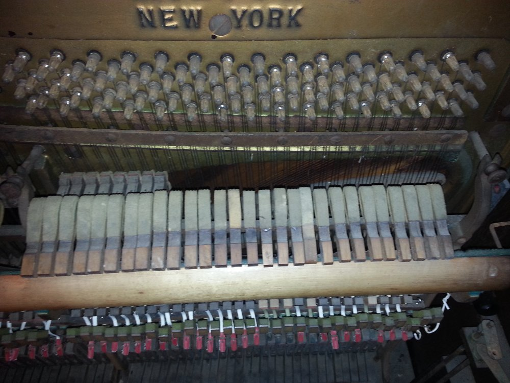 The top 20 or so notes in the piano do not require the damper mechanism