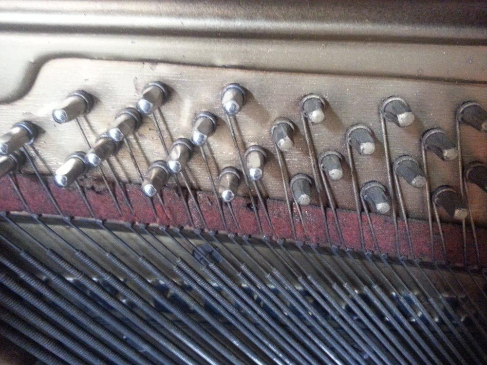 Bass tuning pins in a Kimball upright. The shiny pins on the left are slightly larger replacement pins. The dull pins on the right are the originals that no longer are able to do their job of holding tension on the strings.