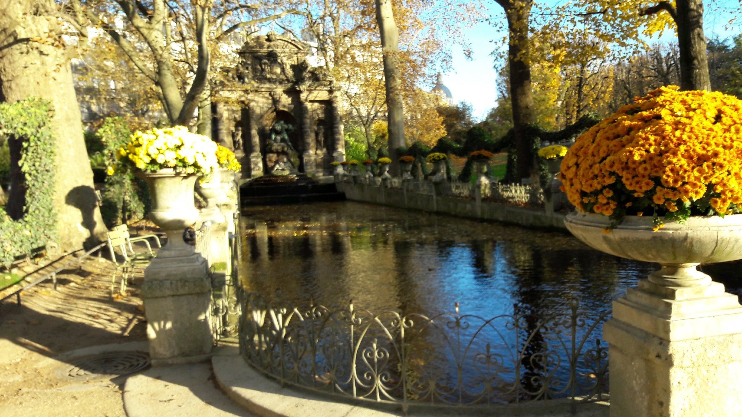 A golden garden ready for November.