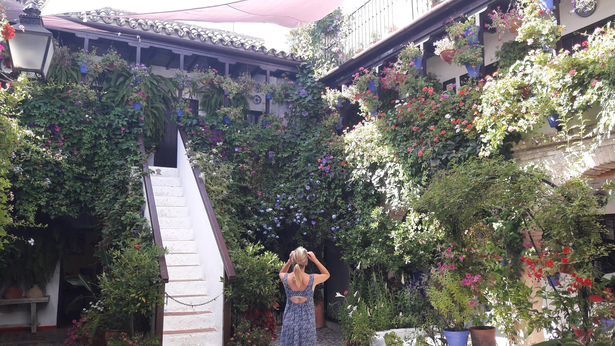 Gardens of Cordoba - What do you bring me?
