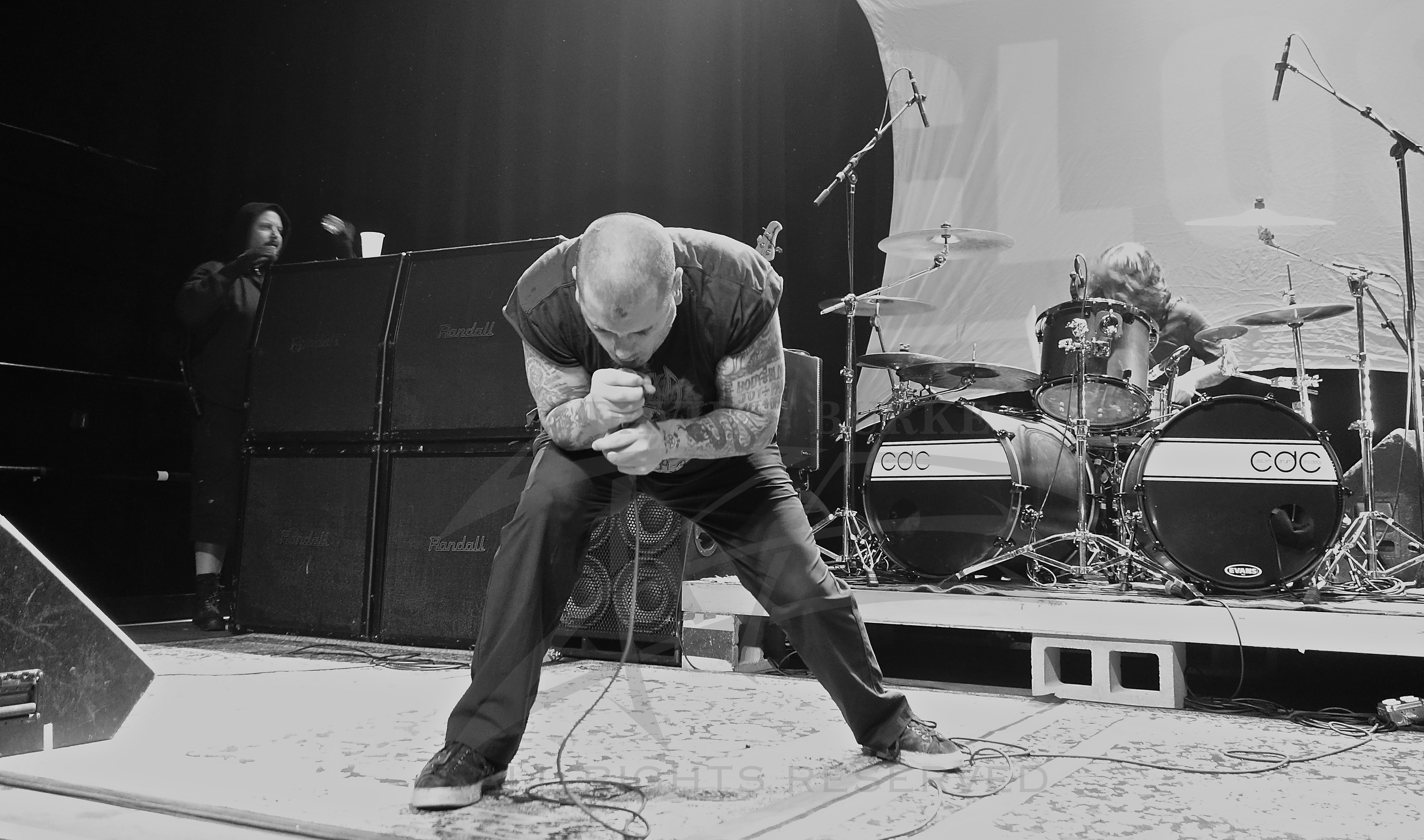 Phil Anselmo  photo: David Burke