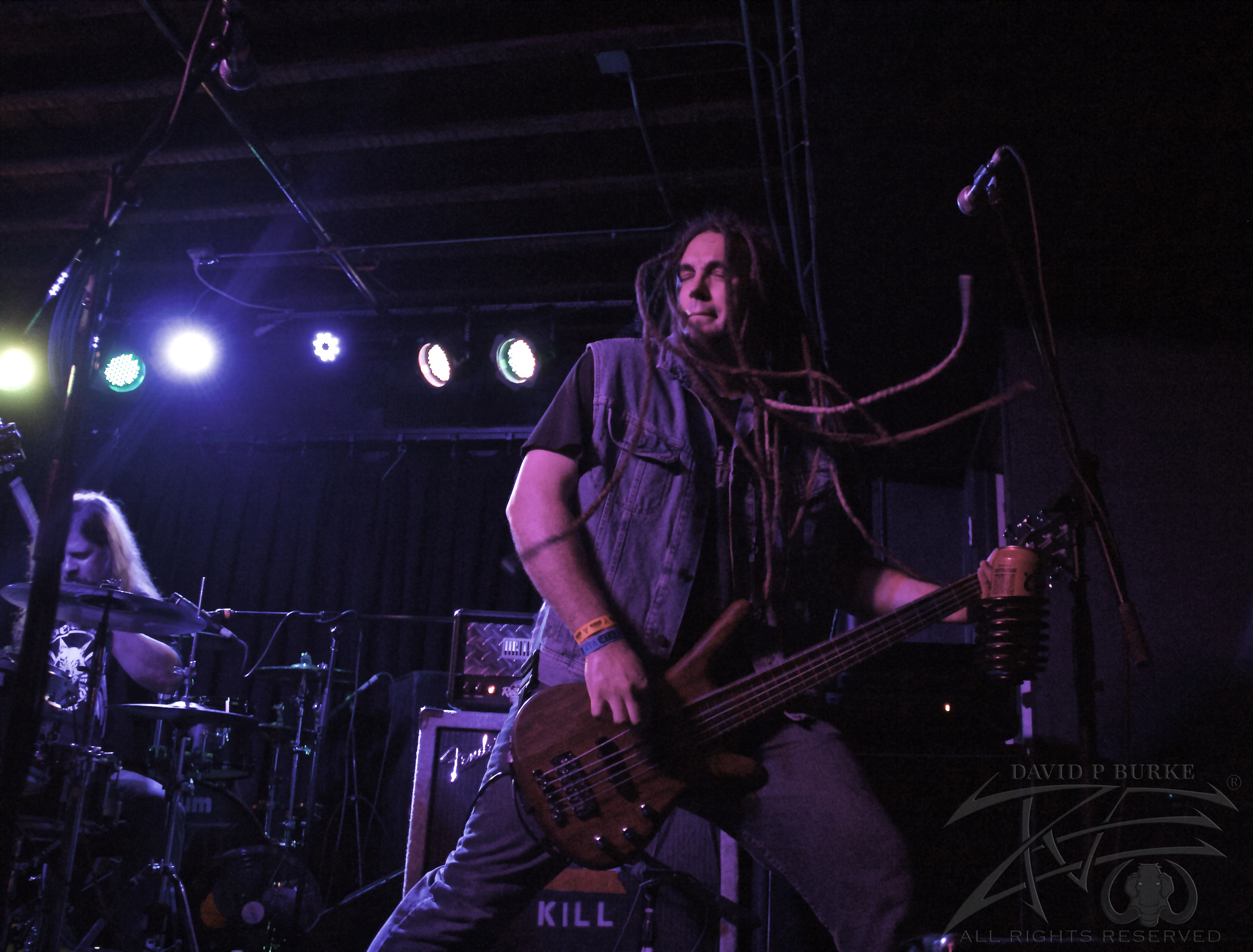 Lotus Gait bassist Tim Hankinson  photo: David Burke