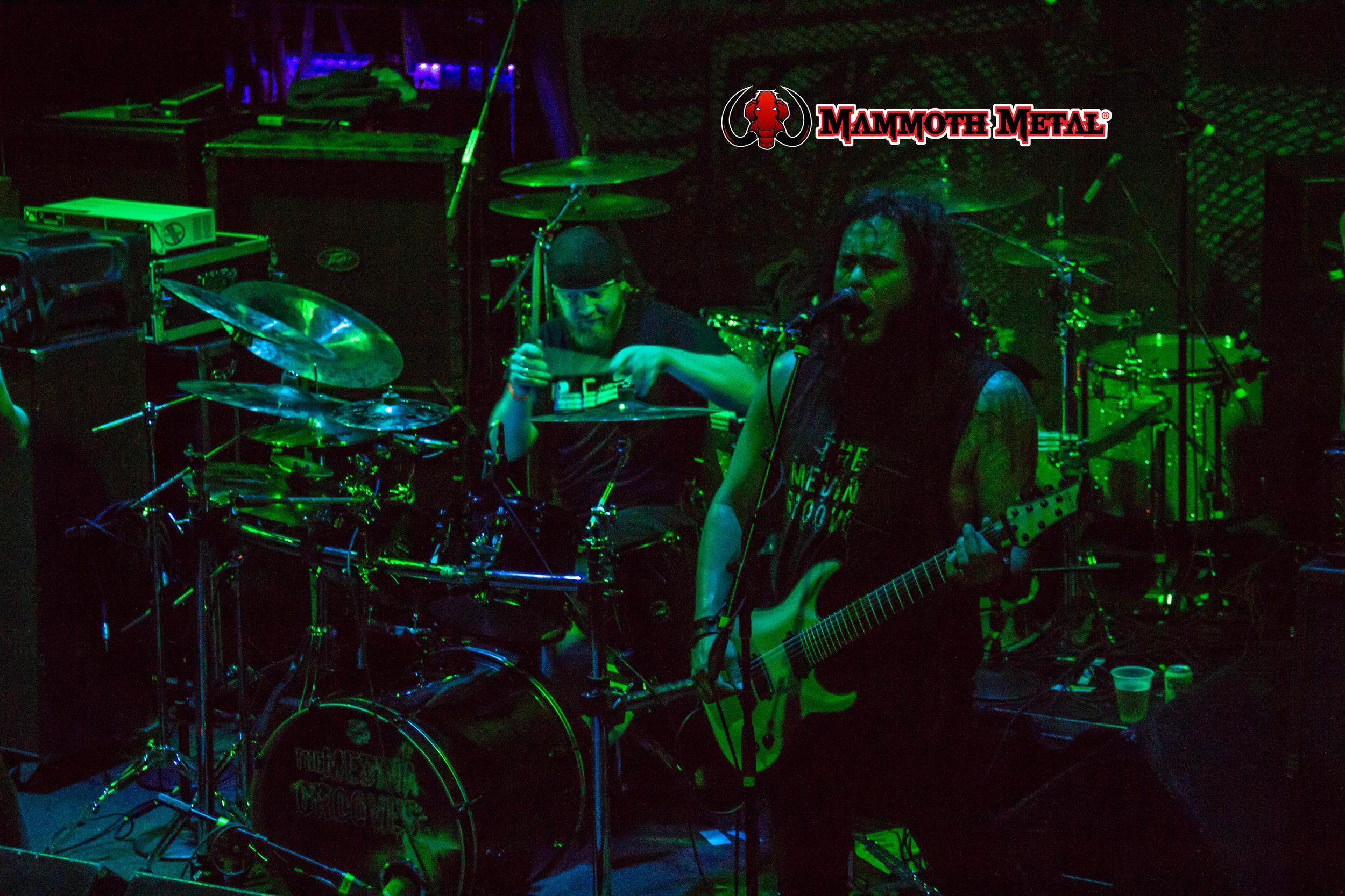 The Medina Grooves  photo: David Burke