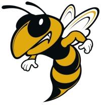 WR Hornet.jpg