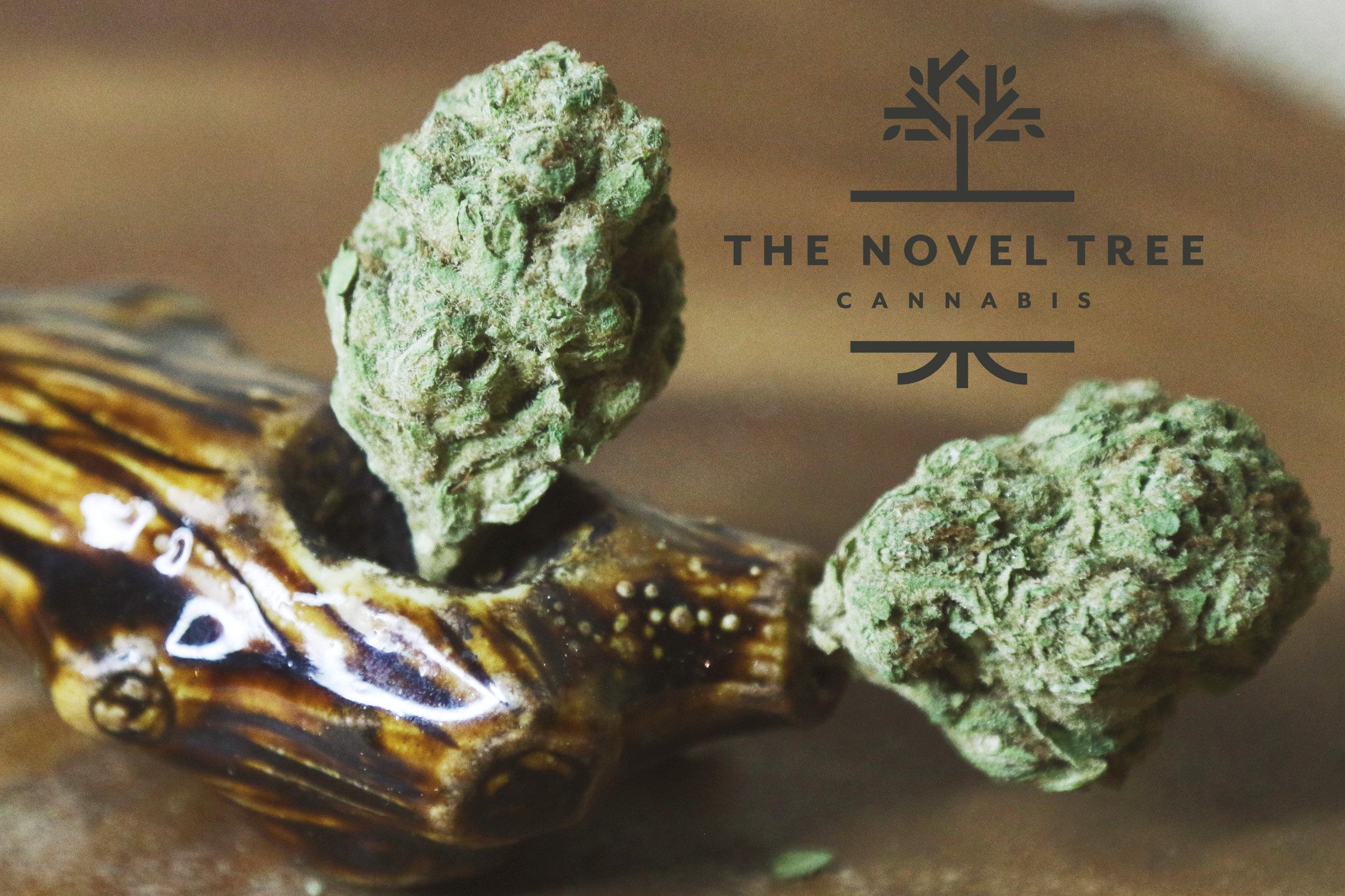 NovelTree - LeafWerx Kirkwood 10.jpg