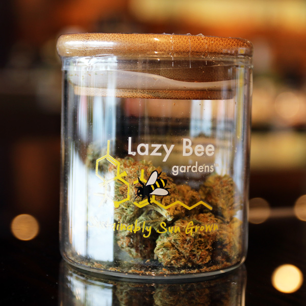 Blue City Diesel by Lazy Bee Gardens - With notes of diesel and blueberry (as you'd expect!) this balanced sun-grown hybrid packs happy, uplifting vibes while allowing you to chill out at the same time. High in terpinolene, one of the least common terpenes known for it's floral notes.