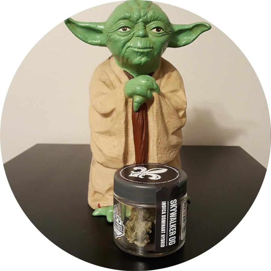 Enjoy Skywalker OG, feel the force you will! - Master Yoda