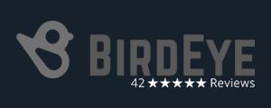 Portland Criminal Defense Attorney Birdseye