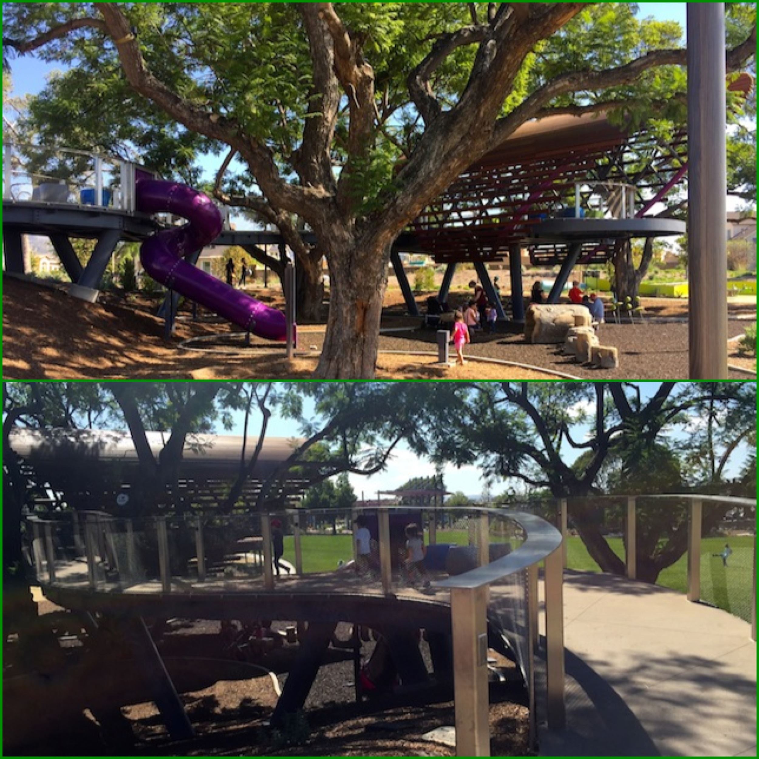 park collage 1.jpg