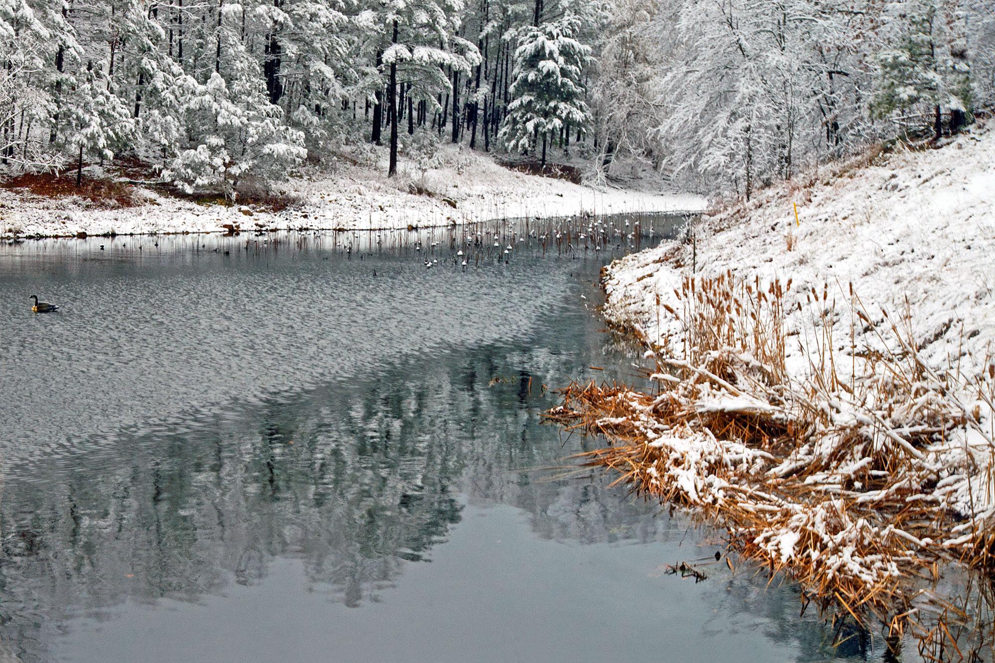 HI Winter Wonderland.jpg