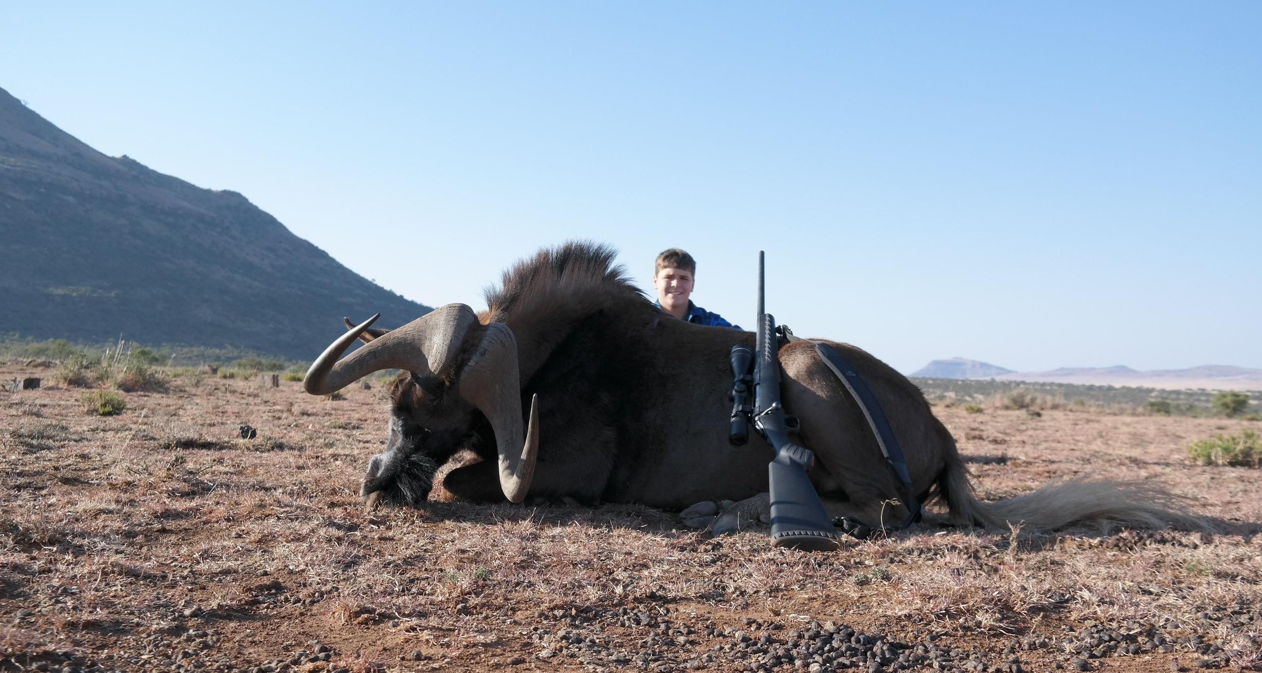 Black Wildebeest Taken With Jard Trigger