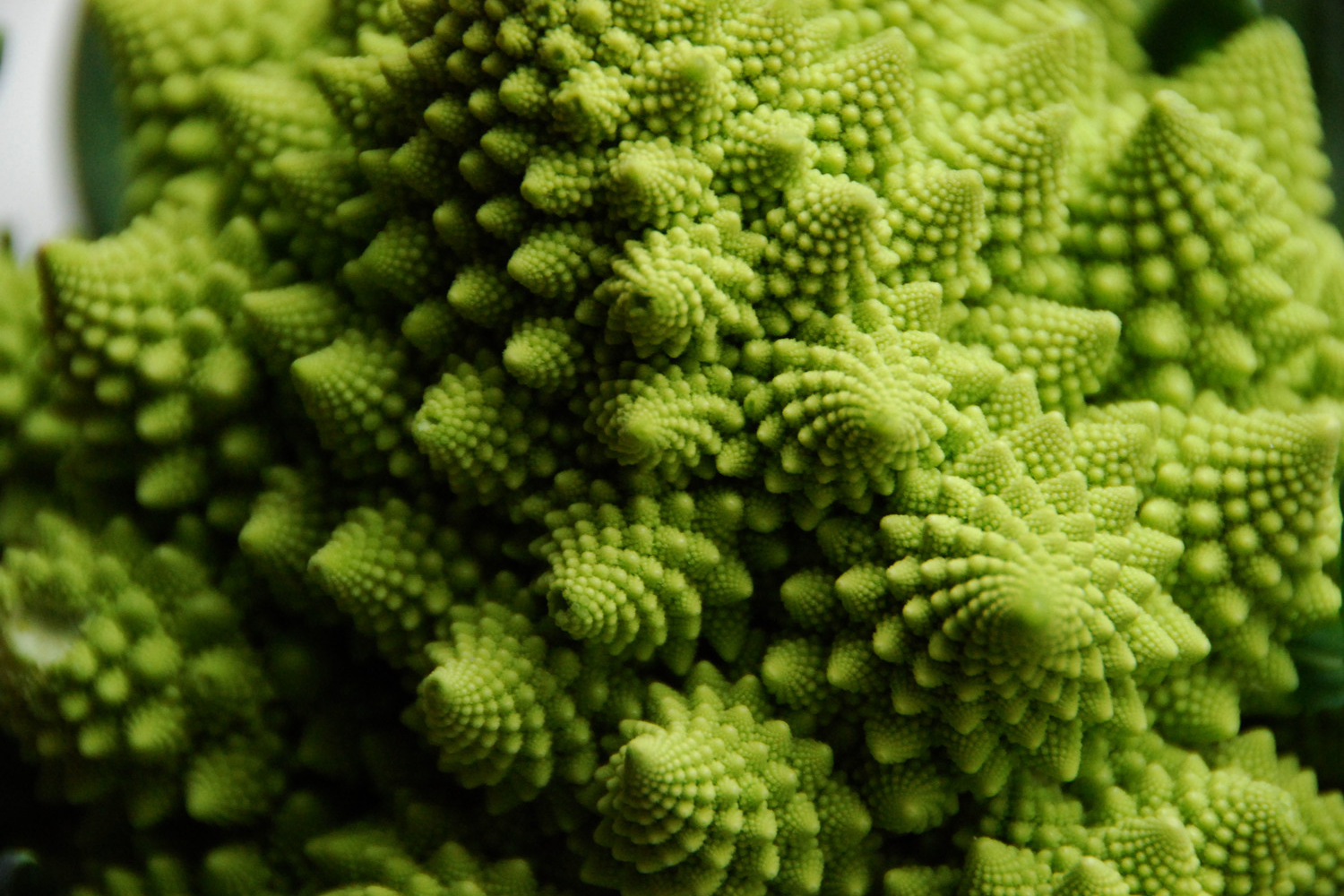 ROMANESCO             IMAGE: COMMUNITYTABLE.COM