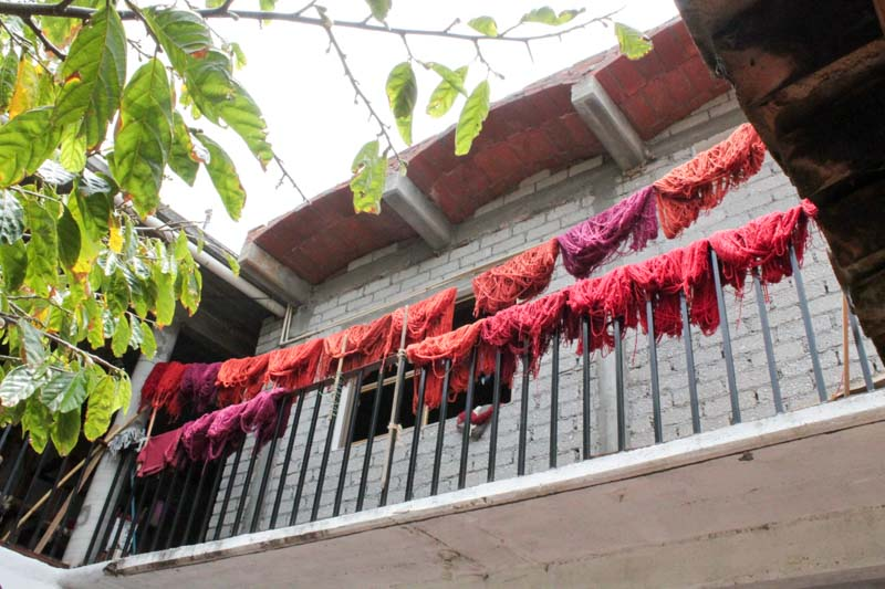 Home weaving and dyeing taller in Teotitlán del Valle, Oaxaca