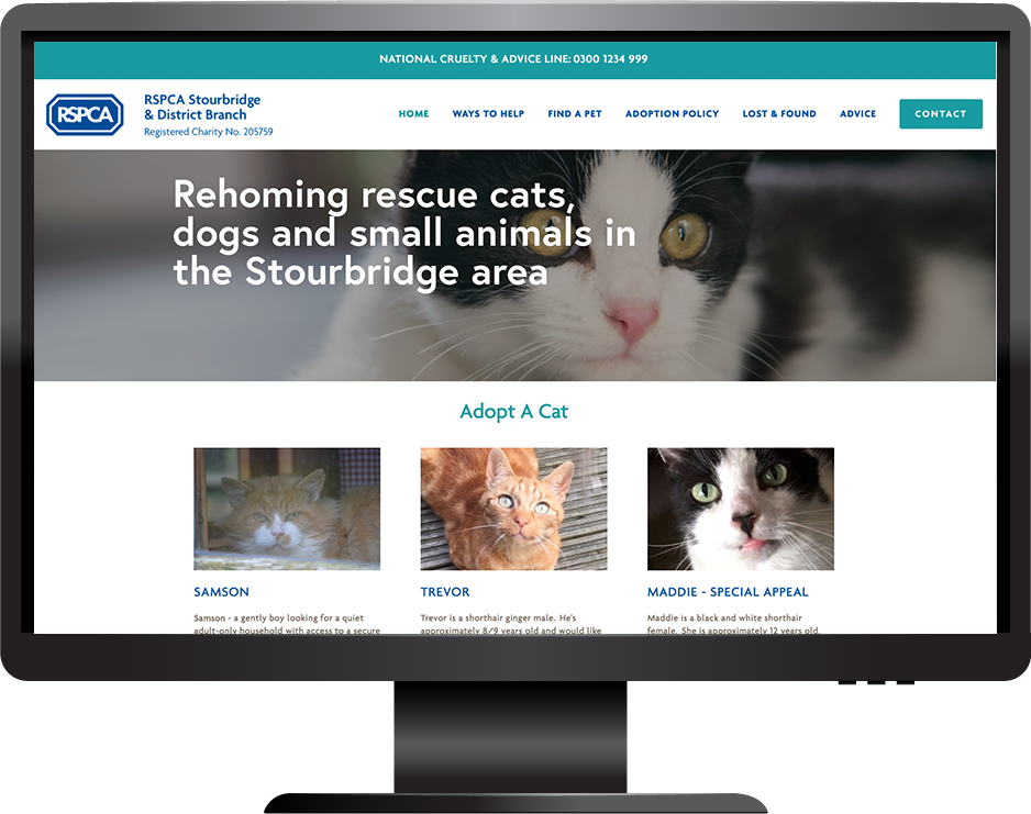 RSPCA animal charity Squarespace website