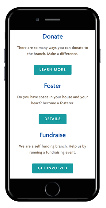 mobile view responsive charity website Squarespace