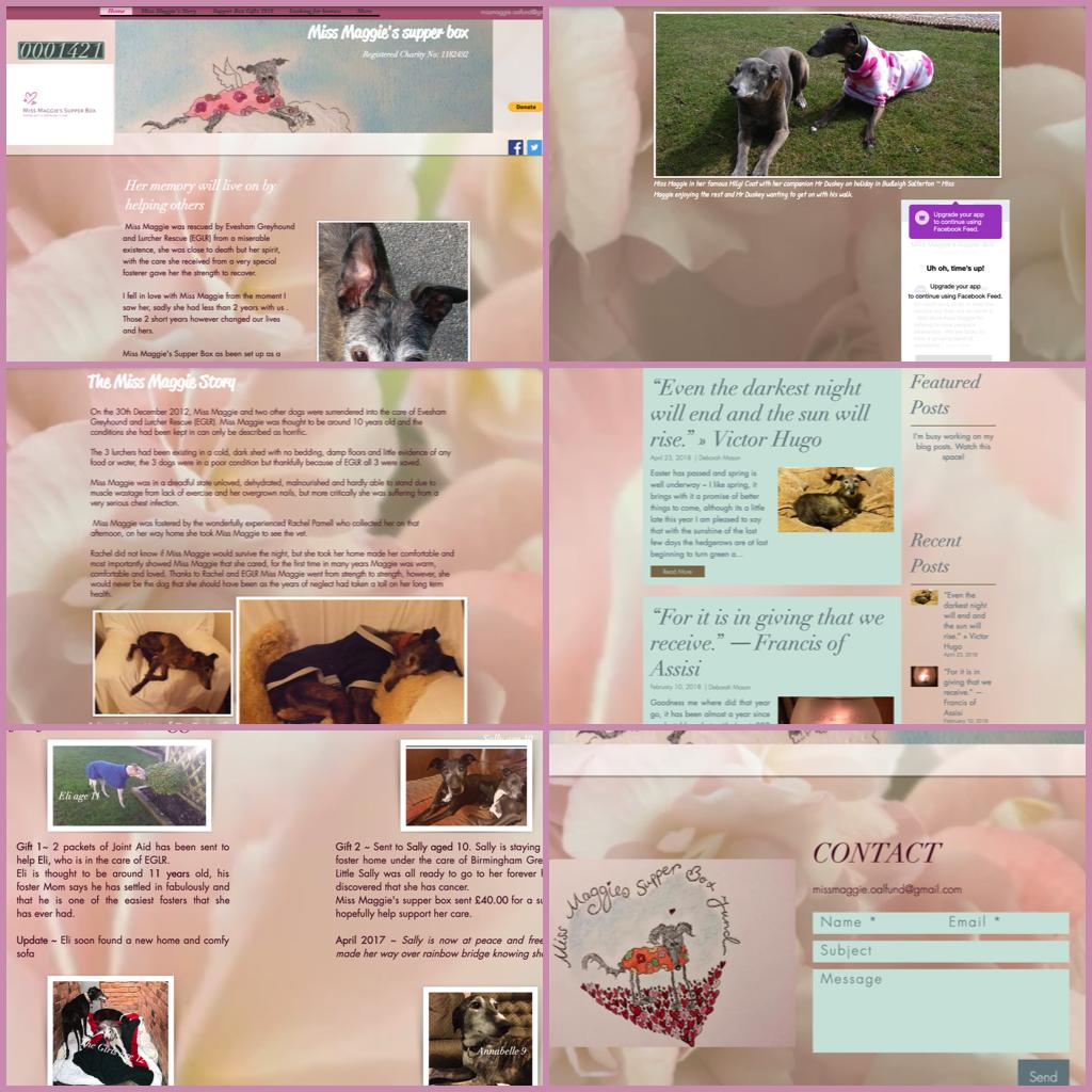 Previous Wix website