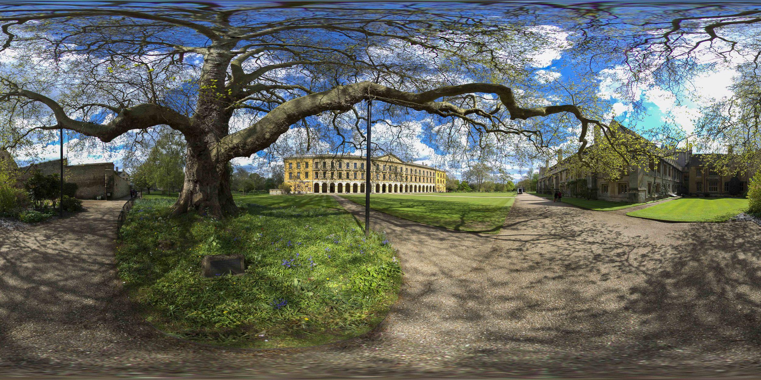 MagdalenUniversity-1-PanoramaEquiFinal.jpg