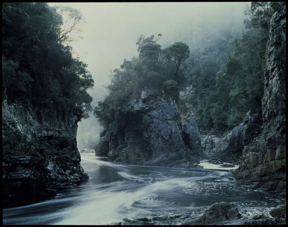 Morning Mist, Rock Island bend, Franklin River 1980 or 1981 by Peter Dombrovskis.