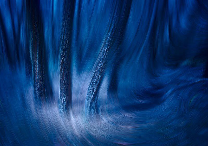 Windswept © Mark Kelly