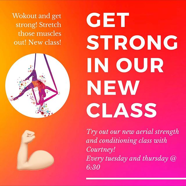 NEW CLASS ALERT!!! • • Try out our new aerial strength, conditioning and stretching class! It's every Tuesday and Thursday @ 6:30 • • #aapaf #circus #circusclasses #aerialclasses #contortion #aerialist #acrobat #acrobatics #performer #redlands #redlandsca #aboutredlands #performingarts #fitness #fitnessclasses #kidsclasses #afterschool #activitiesforkids #aerialfitness #strength #workout #getstrong #conditioning #stretching #strong
