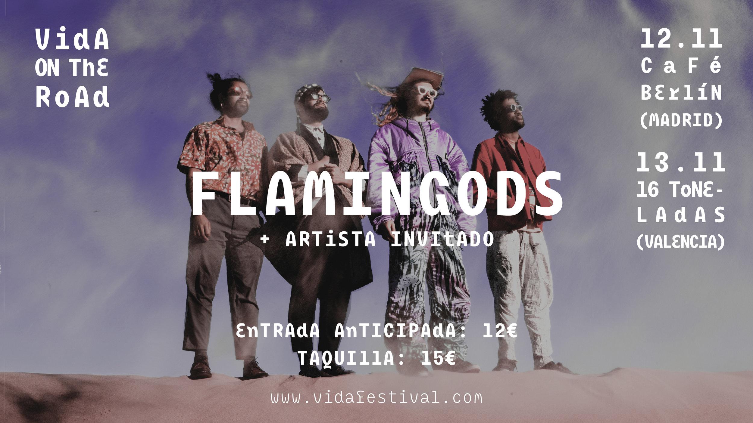 FlamingodsVidaOnTheRoad_1920x1080_V3.jpg