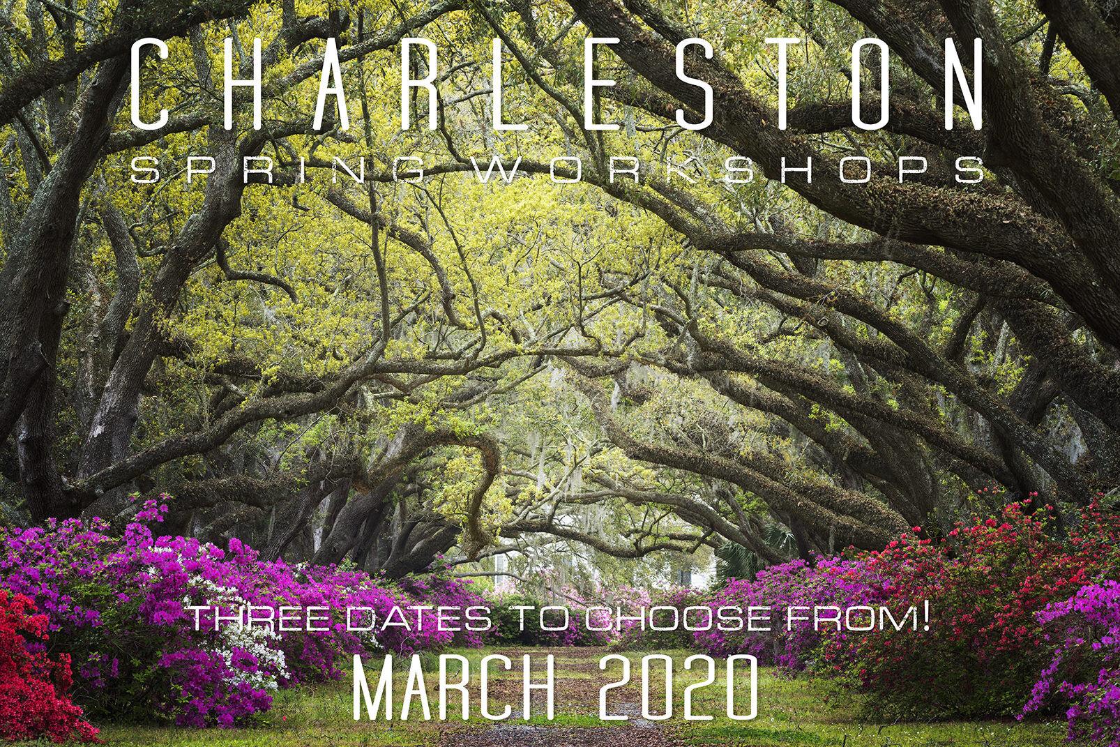 Charleston Spring Photo Workshop