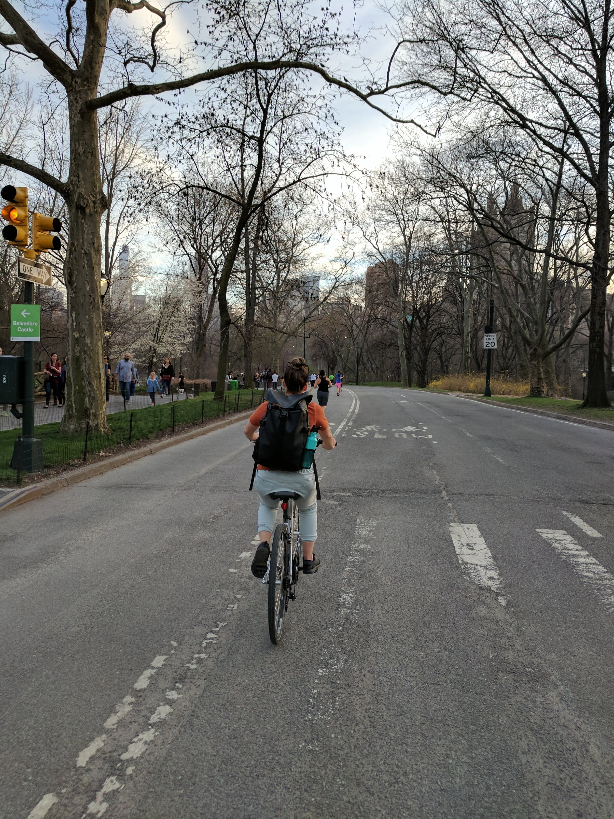 Central Park Bike Riding