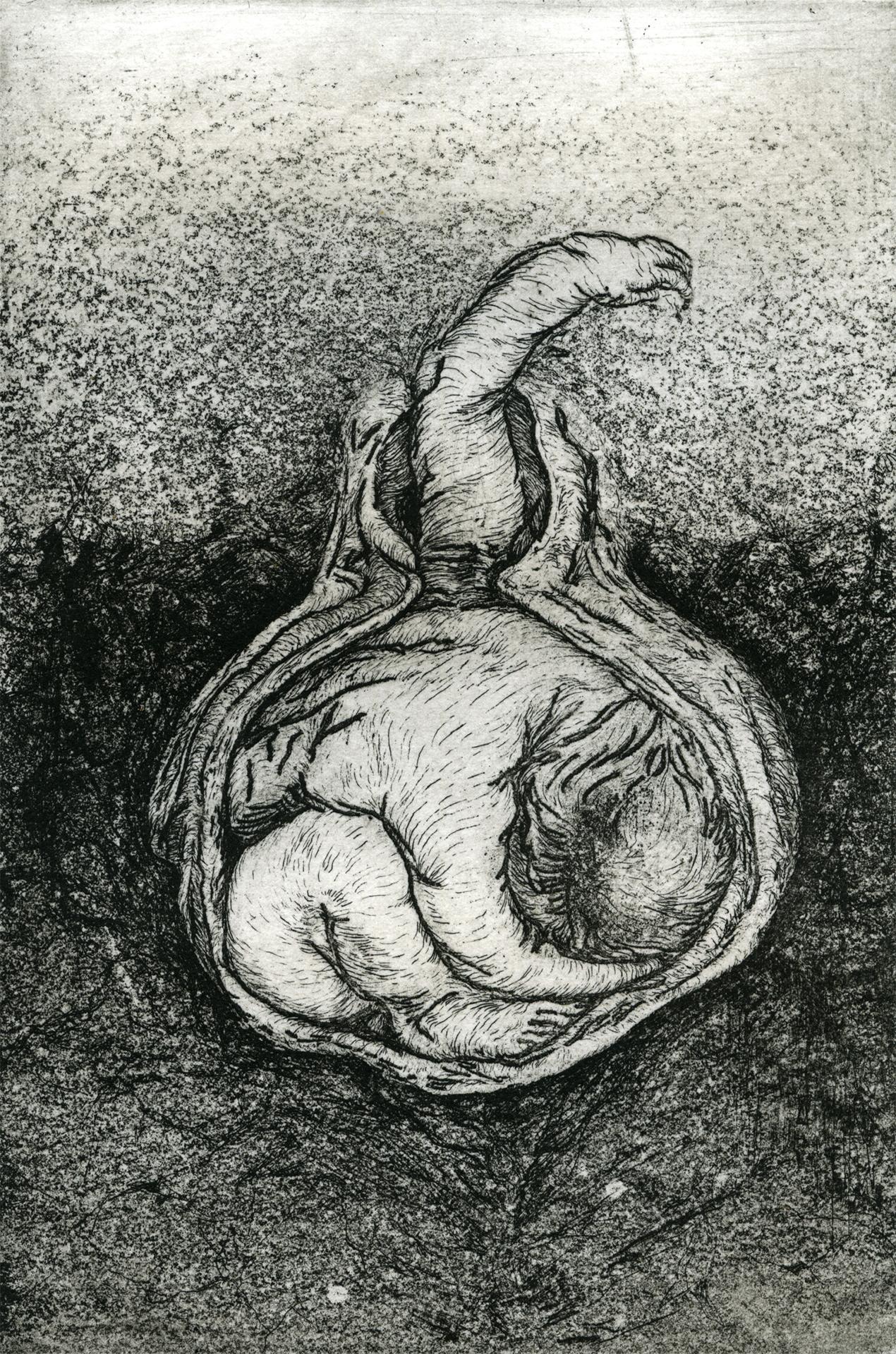 "Fructify , 4"" x 6"", etching, 2014"