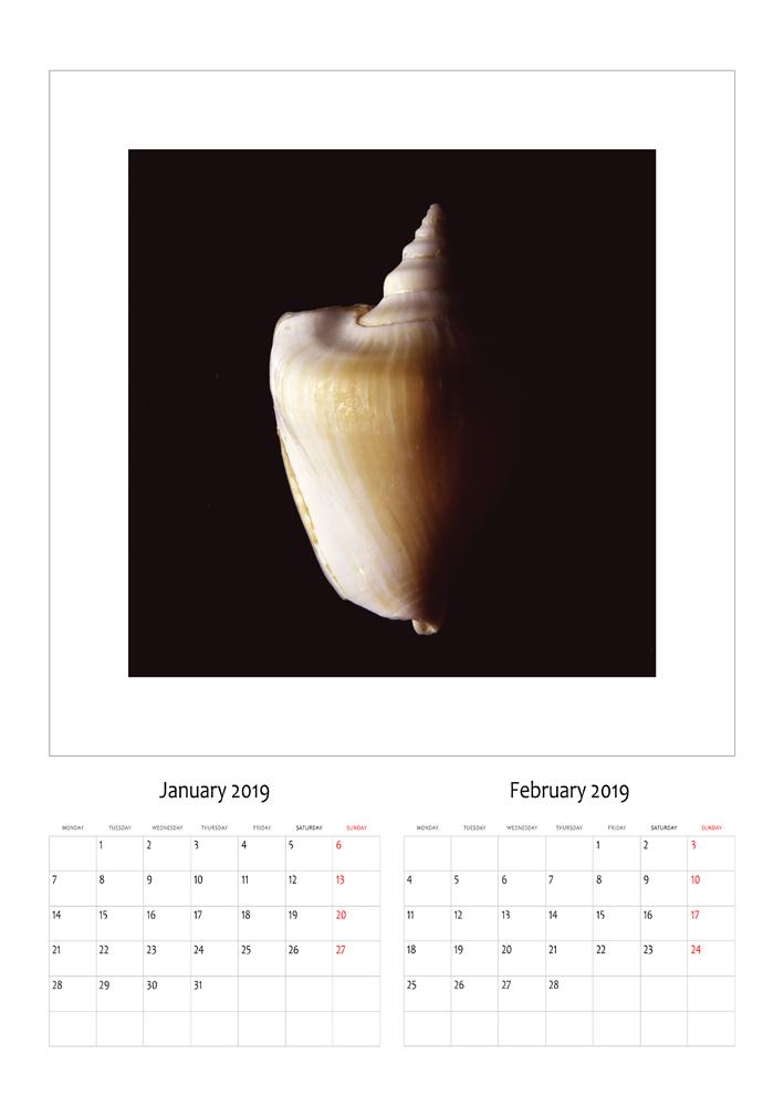 janar-shkurt.jpg