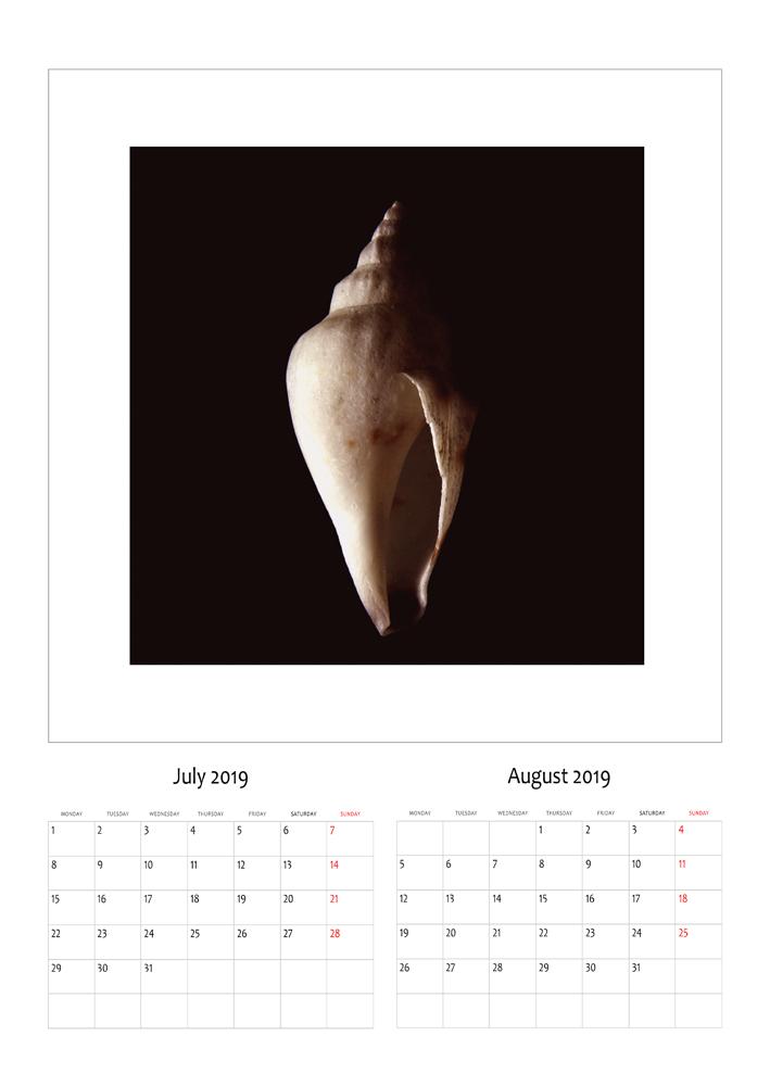 korrik-gusht.jpg